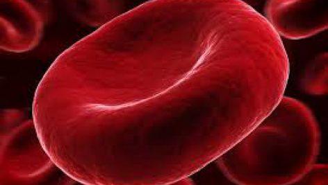 پاورپوینت , دستگاه گردش خون , 75 اسلاید , PPTX
